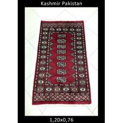 Kashmir Pakistan